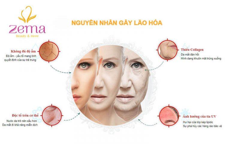 Các nguyên nhân gây lão hóa da