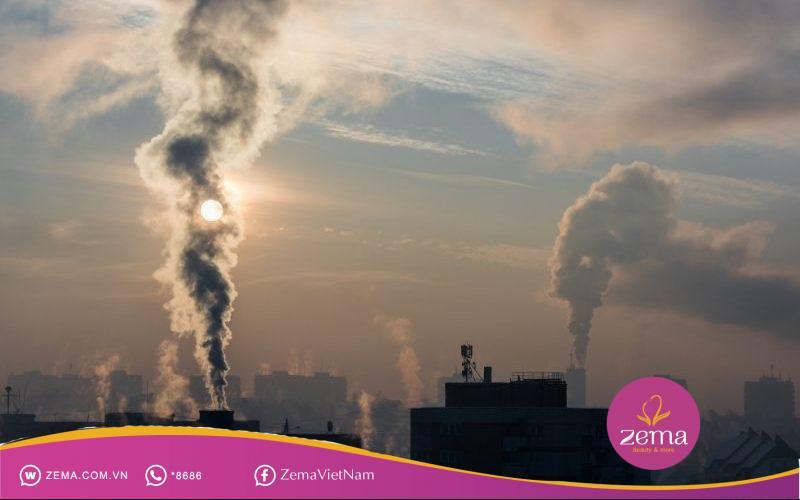 Dị ứng do các tạp chất từ môi trường