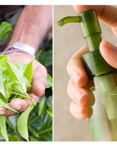 Cách làm toner dưỡng da bằng trà xanh tại nhà
