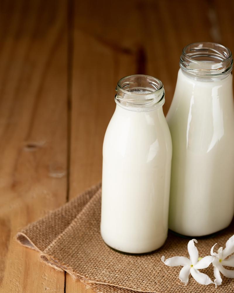 Sữa tươi giúp dưỡng da rất tốt