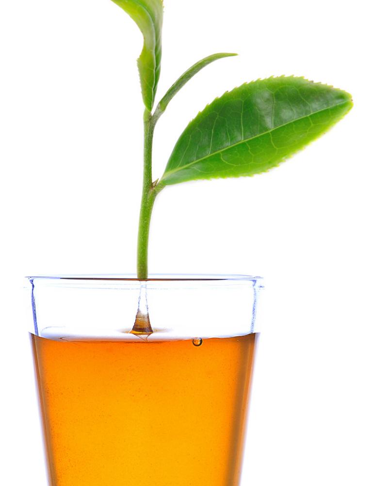 Mật ong và trà xanh giúp đốt cháy mỡ thừa