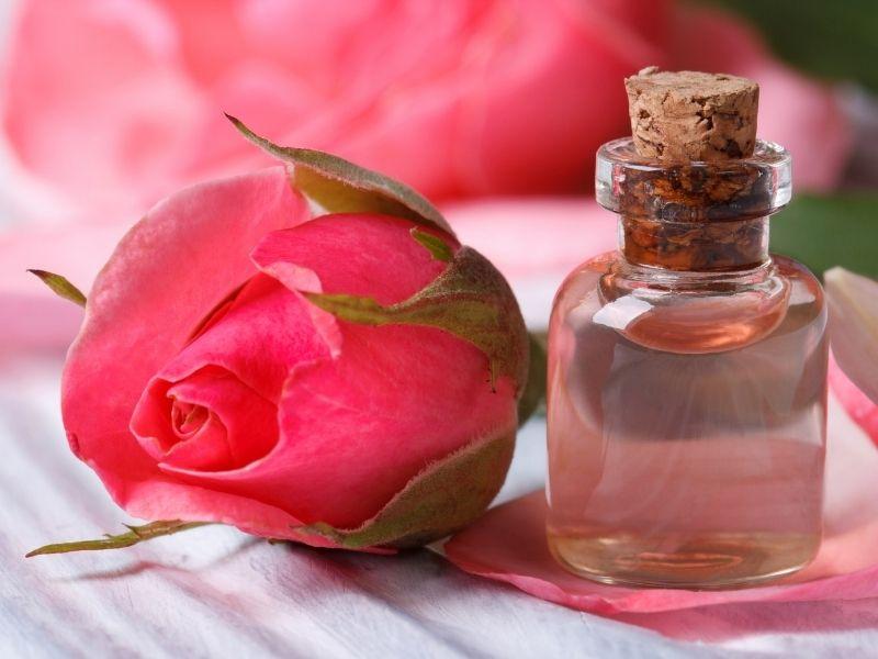 Nước hoa hồng có thể dùng loại bỏ thâm quầng