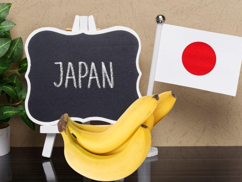 Phương pháp giảm cân bằng chuối Morning Banana Diet