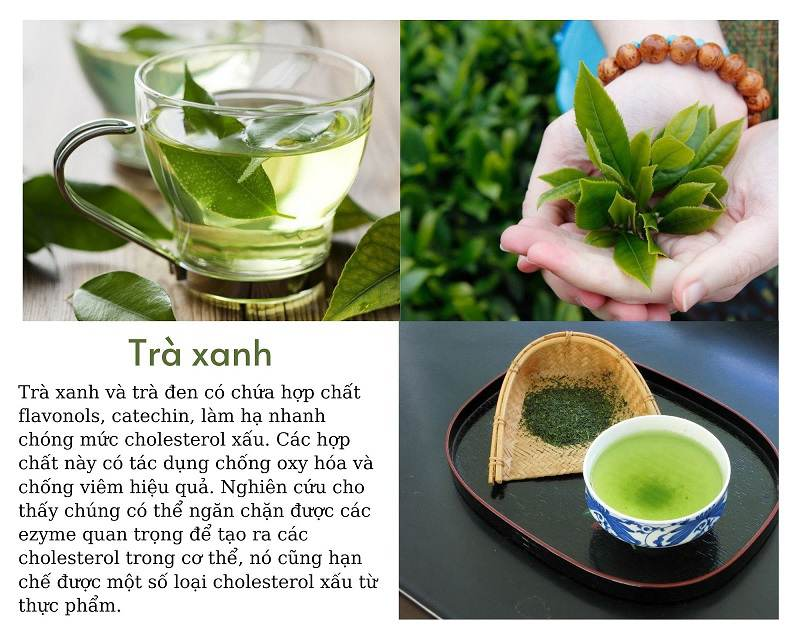 Lá trà xanh có rất nhiều công dụng hỗ trợ sức khỏe