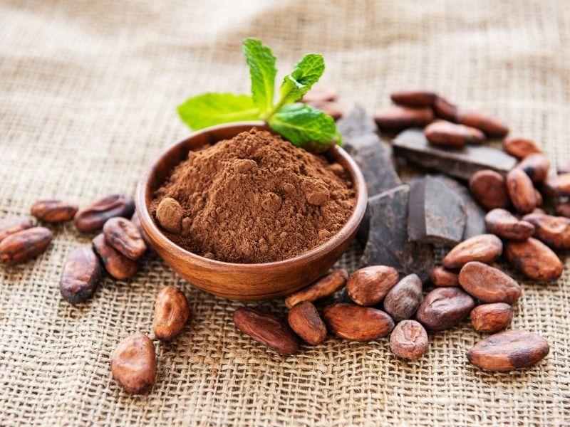 Ca cao được dùng nhiều trong socola