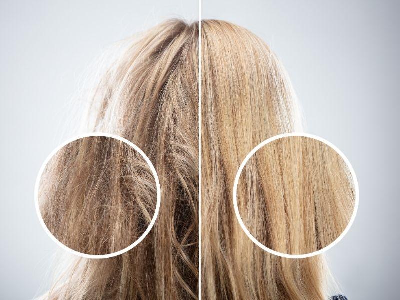 Khả năng phục hồi tóc hư của dầu dừa rất tốt