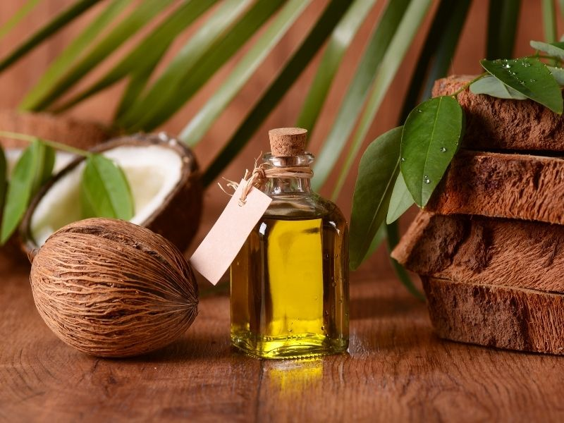 Dầu dừa mang lại nhiều công dụng tuyệt vời đối với làn da